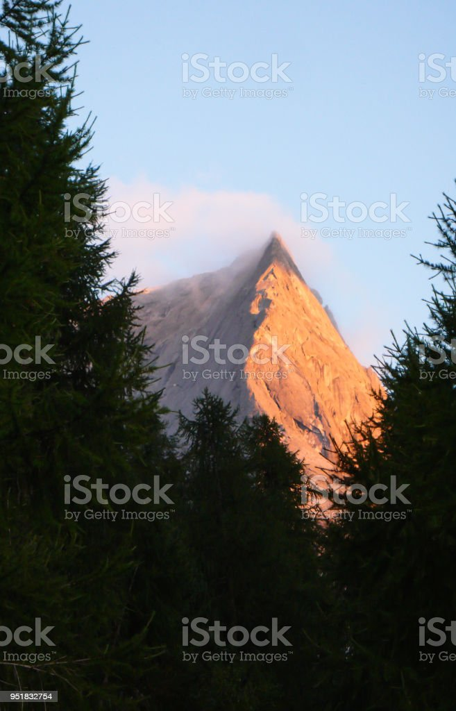 view of the classic ascent route of Pizzo Badile in the Swiss Alps framed by Swiss pine trees in warm evening light stock photo