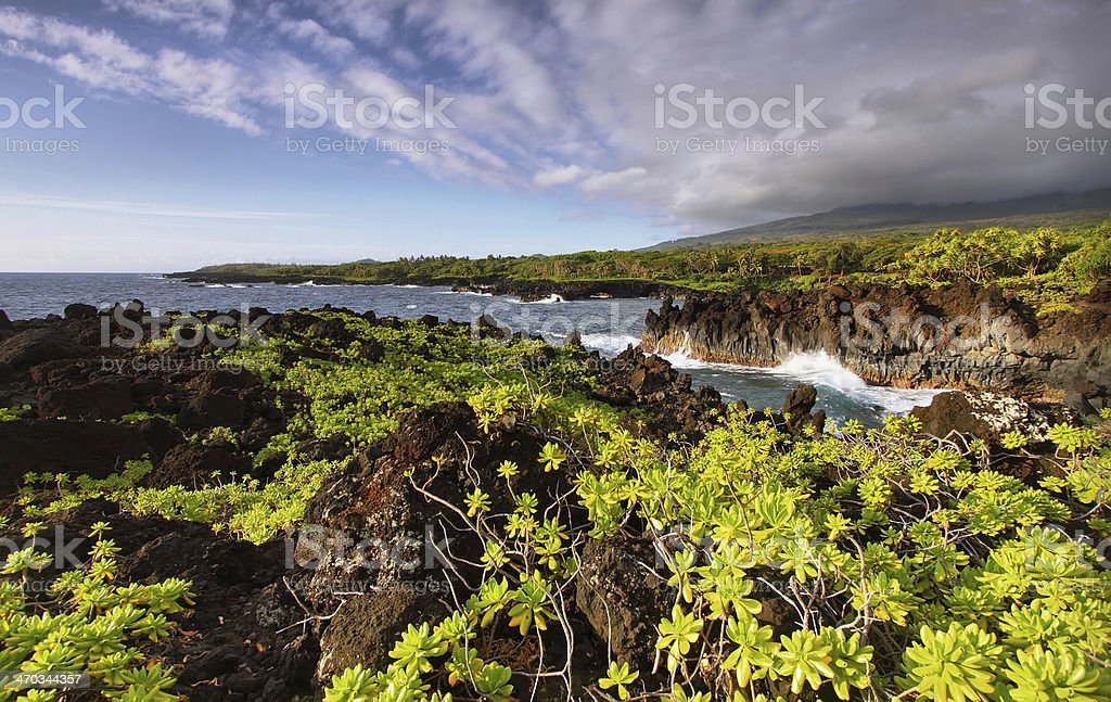 View of the coast in Waianapanapa State park stock photo