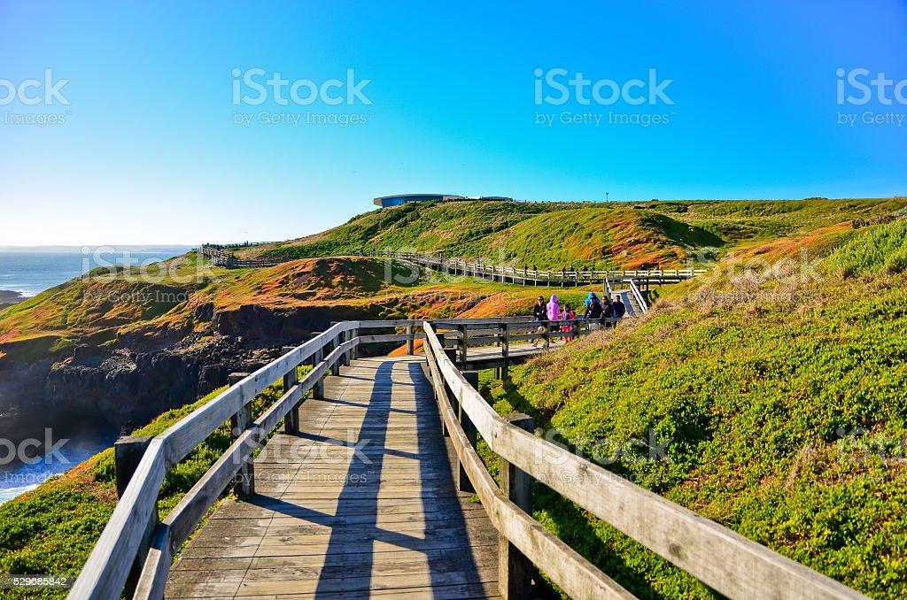 View of the coastline in Phillip Island, Victoria, Australia. stock photo