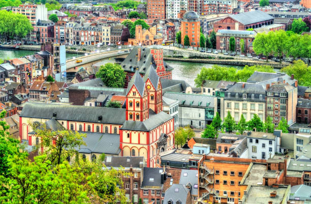 View of the Collegiate Church of St. Bartholomew in Liege, Belgium View of the Collegiate Church of St. Bartholomew in Liege - Belgium lulik stock pictures, royalty-free photos & images