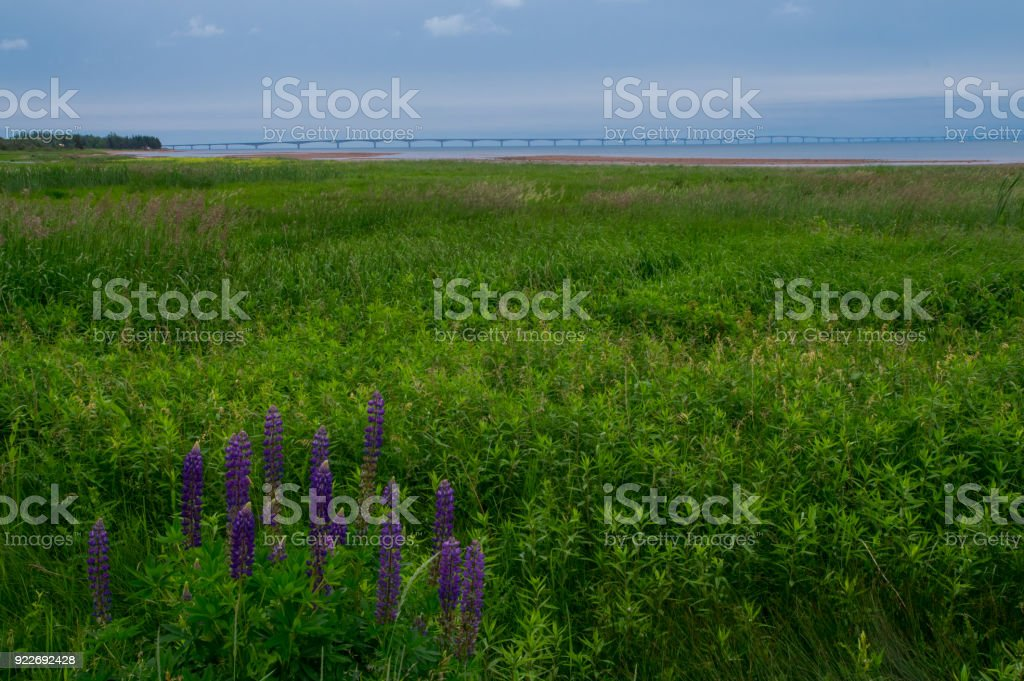 View of the Confederation Bridge, Prince Edward Island stock photo