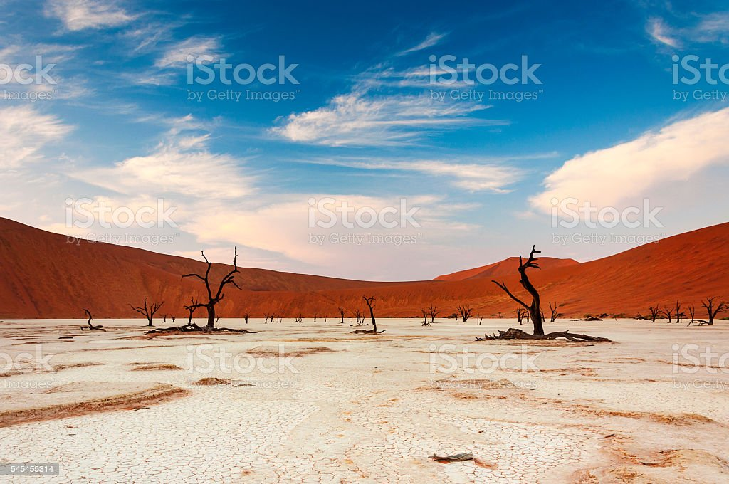 View of the Deadvlei in Namibia stock photo