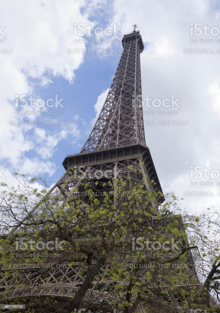 View of the Eiffel Tower with flowering trees stock photo