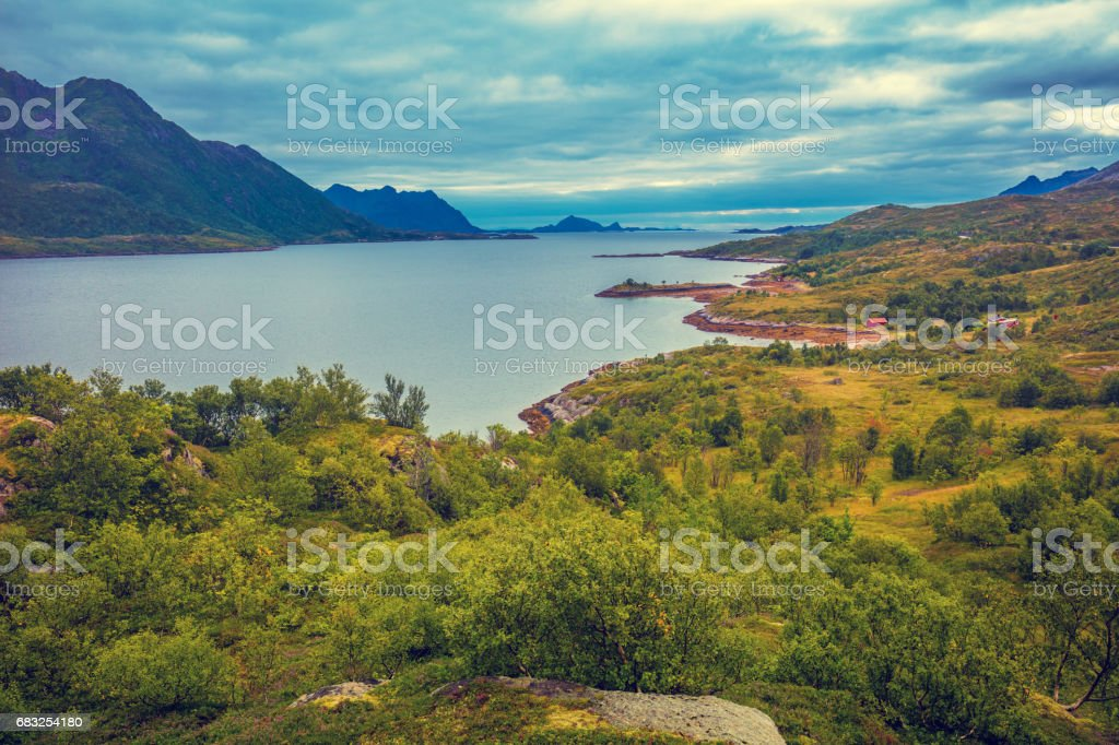 View of the fjord. Rocky seashore with blue cloudy sky. Beautiful nature Norway. Sea low tide 免版稅 stock photo