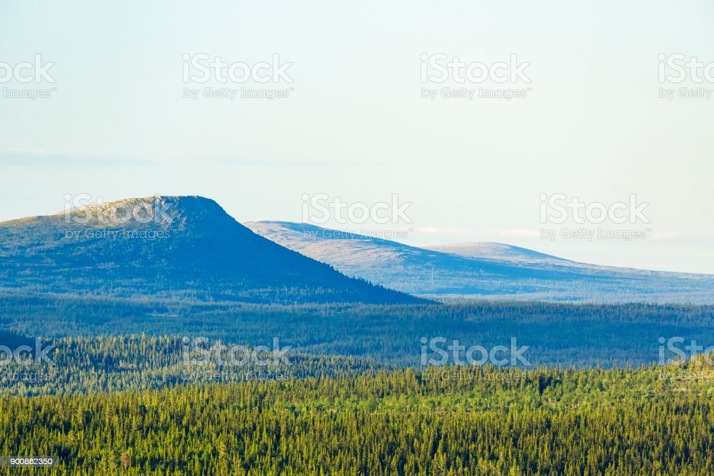 View of the forest with the mountains in the background stock photo
