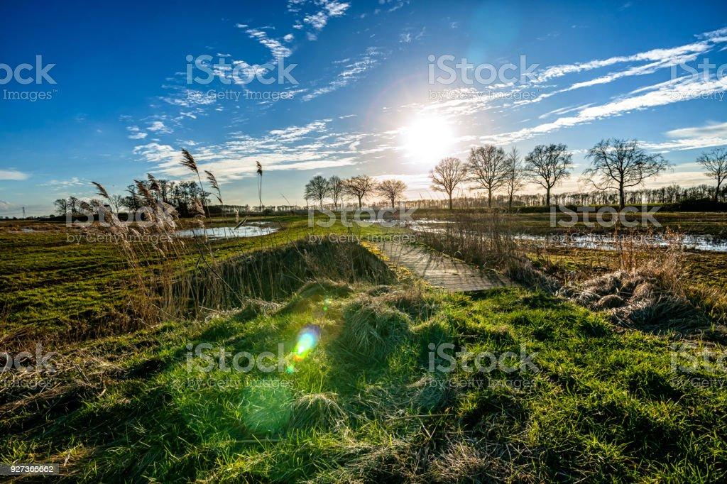 View of The former Schokland Island in the Dutch Noordoostpolder Backlight photo with view of grassland and a sunny sky in the background during winter period in the Netherlands Agricultural Field Stock Photo