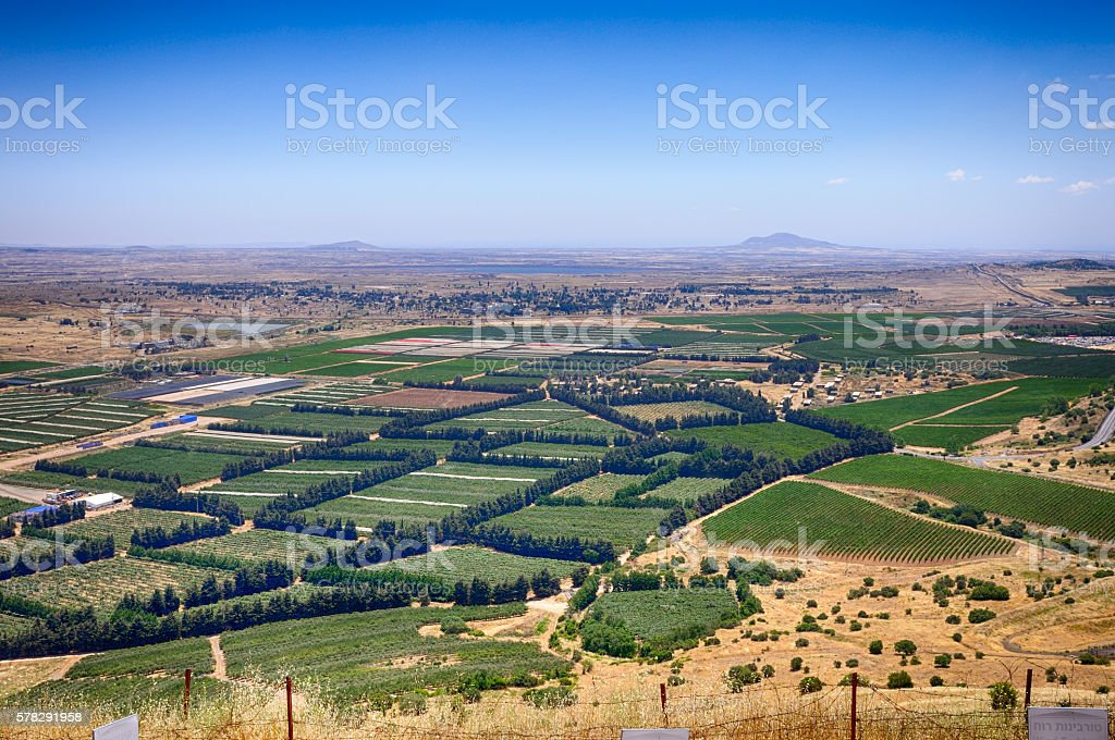 View of the Golan Heights in the summer stock photo