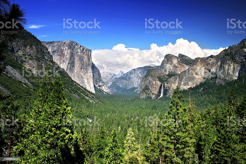 View of the grass and rocks in Yosemite National Park royalty-free stock photo
