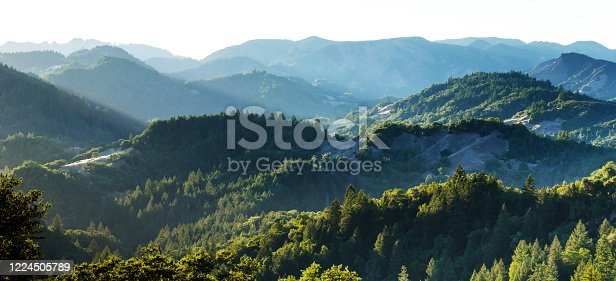 View of the hills, mountains, forest and valleys and many peaks of Armstrong Woods in California USA