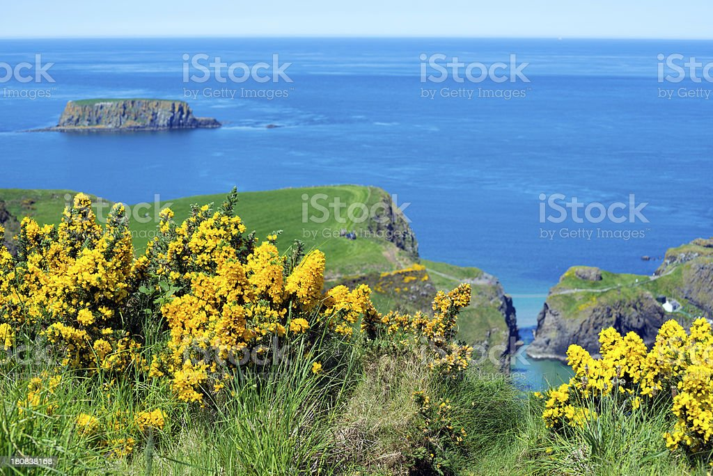 Summer land and seascape in Northern Ireland stock photo