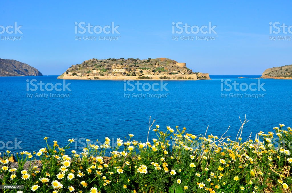 View of the island of Spinalonga with daises at foreground. Here were isolated lepers, humans with the Hansen's desease and took place the story of Victoria 's Hislop novel 'The Island'. stock photo