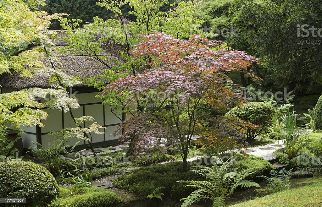 View of the Japanese Garden at Tatton Park, Knutsford, Cheshire. stock photo