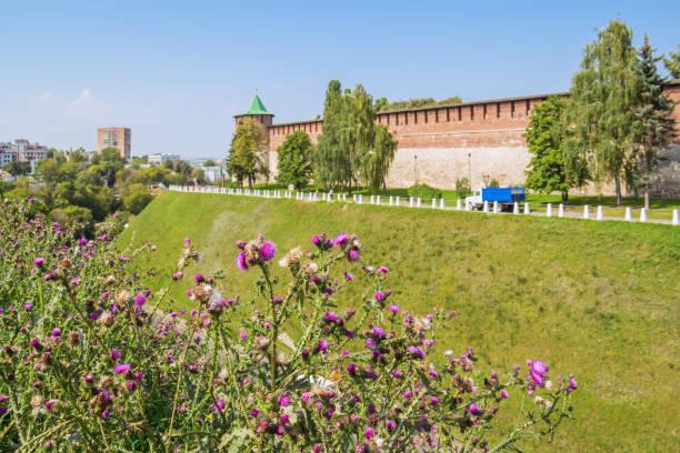 Cтоковое фото View of the Kremlin wall through flowers in Nizhny Novgorod
