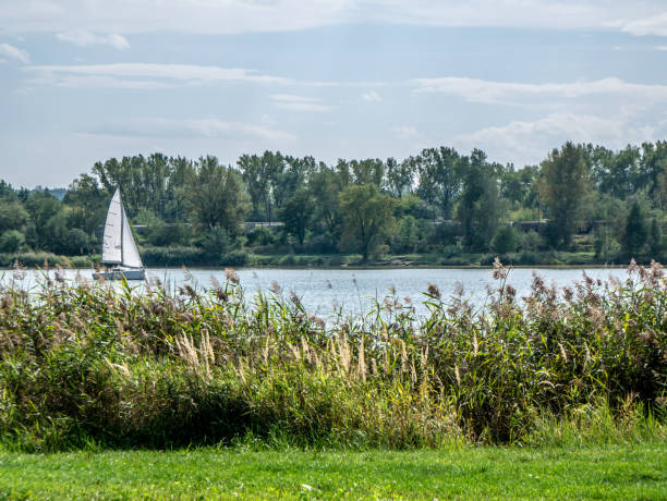 View of the lake in Krakow – zdjęcie