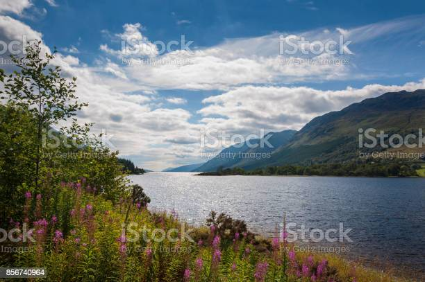 View of the loch ness in scotland picture id856740964?b=1&k=6&m=856740964&s=612x612&h=b7ubdxi4r9h5oqhaaz2a7i kvemaor3mvzpullr1nbg=