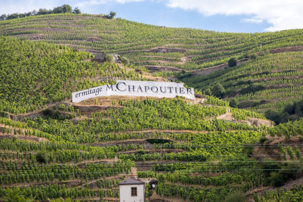 View of the M. Chapoutier Crozes-Hermitage vineyards in Tain l'Hermitage, Rhone valley, France stock photo