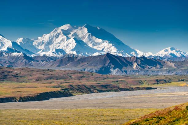 view of the mount denali, denali national park, alaska, usa - tundra imagens e fotografias de stock