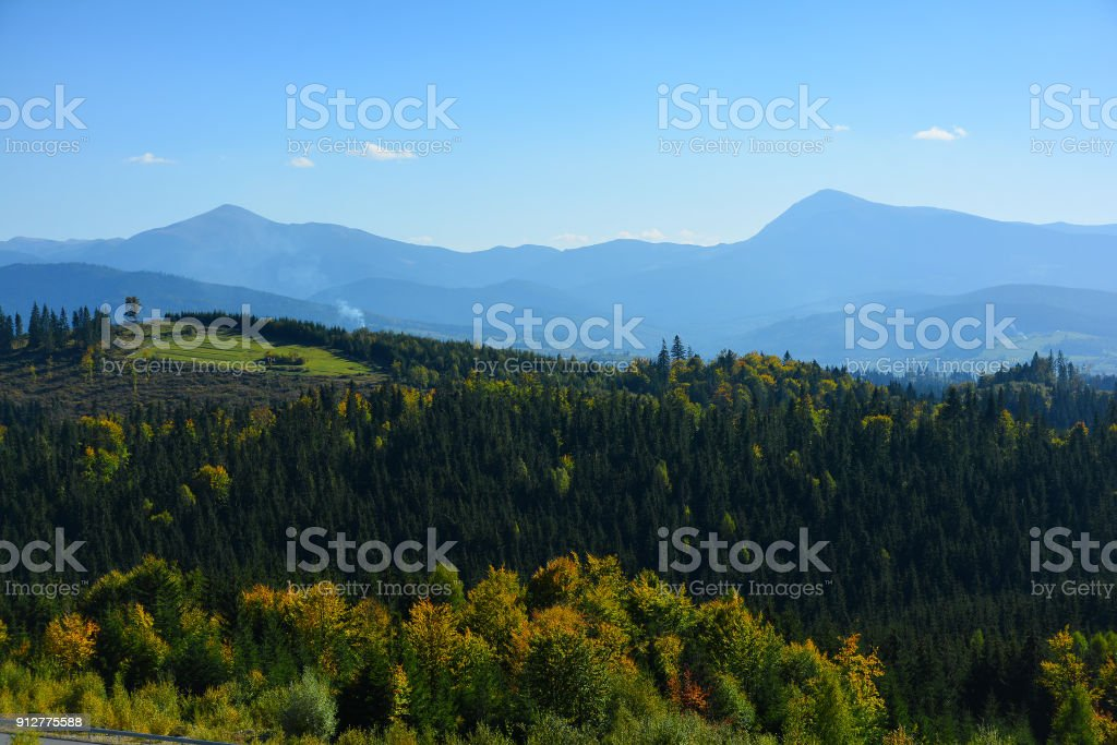 View of the mountains of Hoverla and Petros, Chornohirskyi ridge, Carpathian Mountains, coniferous forest. stock photo