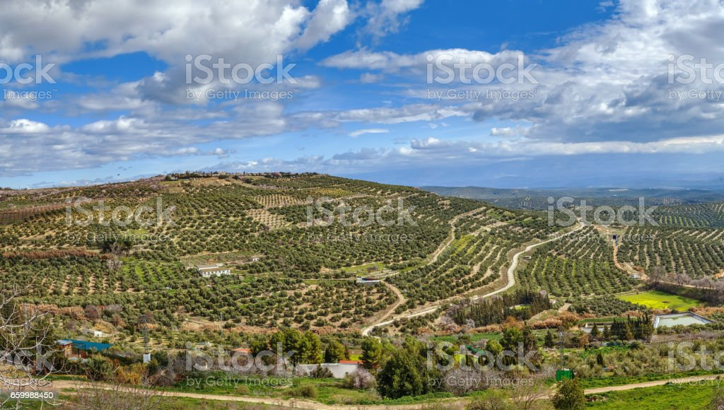 View of the neighborhood of Ubeda, Spain stock photo