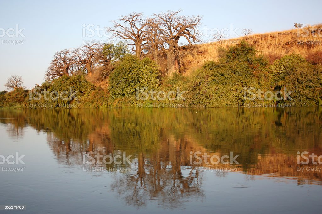 view of the Niger River stock photo