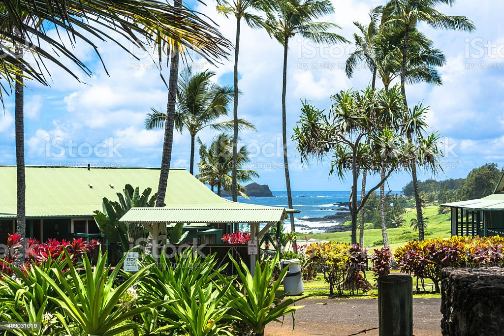View of the ocean from Hana, Maui stock photo