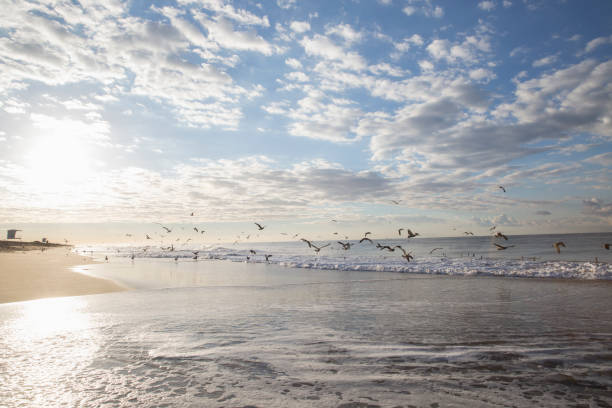 A View of the Ocean waves and clouds from the shore of the beach jude beck stock pictures, royalty-free photos & images