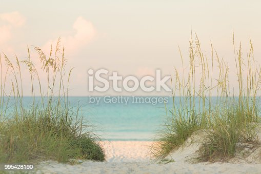 View of the Ocean Through the Sand Dunes at sunrise