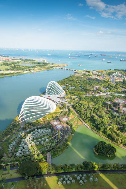 view of the skyline of singapore downtown cbd - marina bay sands stock photos and pictures