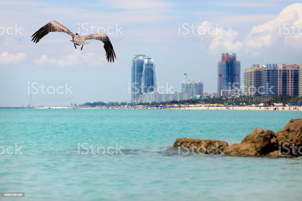 View of the South Beach shoreline stock photo