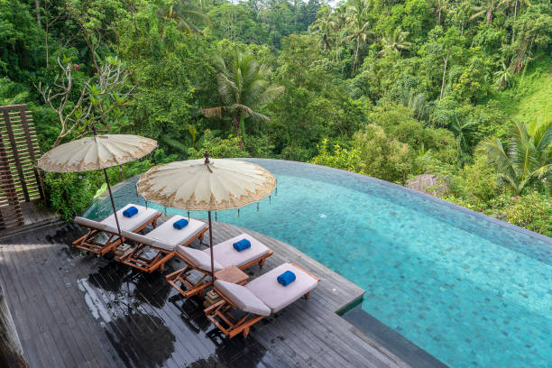 View of the swimming pool water and sunbeds in the tropical jungle near Ubud, Bali, Indonesia , top view View of the swimming pool water and sunbeds in the tropical jungle in the morning near Ubud, Bali, Indonesia , top view lesser sunda islands stock pictures, royalty-free photos & images