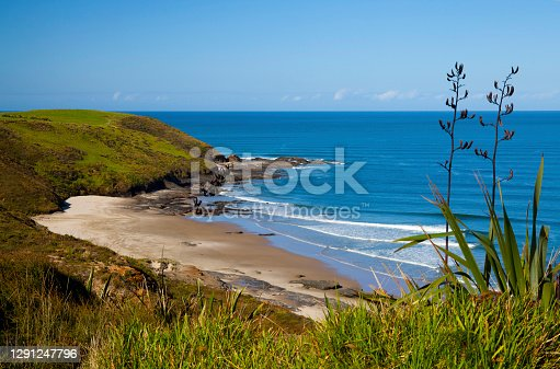 View of the Tasman Sea on the North Island of New Zealand