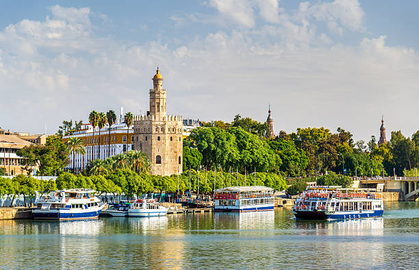 View of the Torre del Oro, a tower in Seville View of the Torre del Oro, a tower in Seville - Spain, Andalusia seville stock pictures, royalty-free photos & images