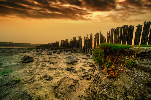 View of the Wadden Sea during sunset, mud and grass in foreground. Moddergat, Friesland, Netherlands.