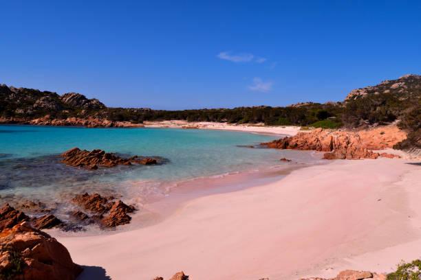 vista della meravigliosa spiaggia rosa in costa smeralda, sardegna, italia - sardegna foto e immagini stock