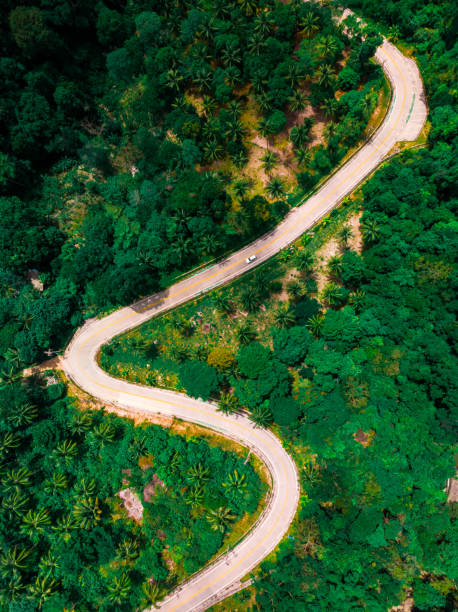 view of the zig zag road in the jungle view from the drone stock photo