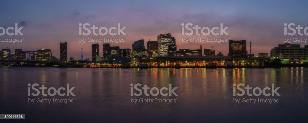 View of Tokyo at Twilight stock photo
