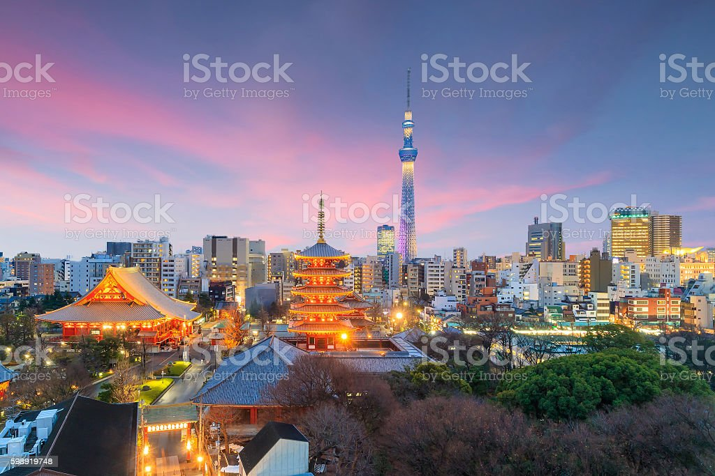 View of Tokyo skyline at sunset stock photo