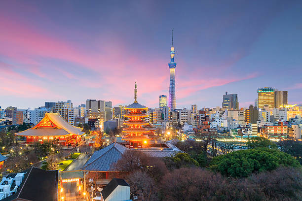 view of tokyo skyline at sunset - tokyo japan stock photos and pictures