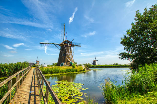 view of traditional windmills in Kinderdijk, The Netherlands