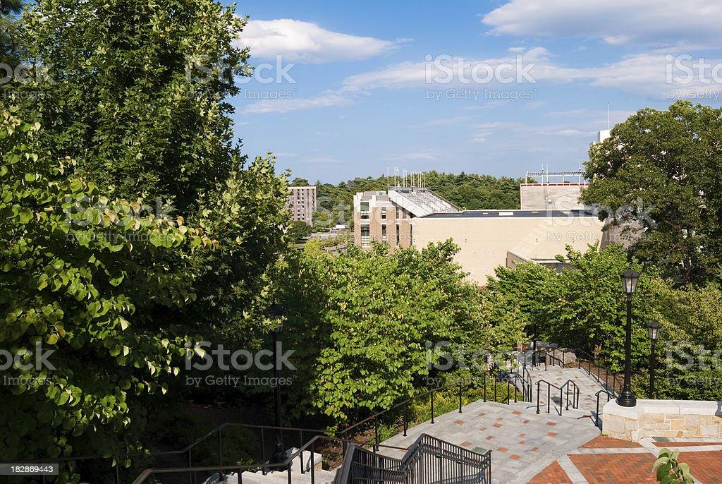 View of trees and Alumni Stadium at Boston College stock photo