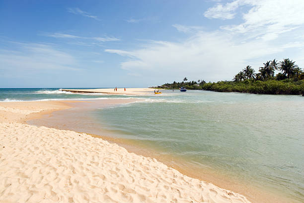 View of Tropical Beach in Brazil  stock photo