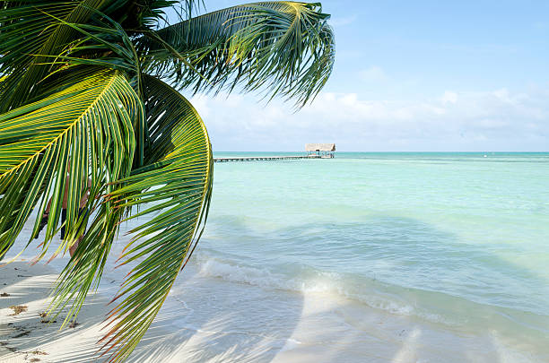 View of tropical beach in Cayo Guillermo stock photo