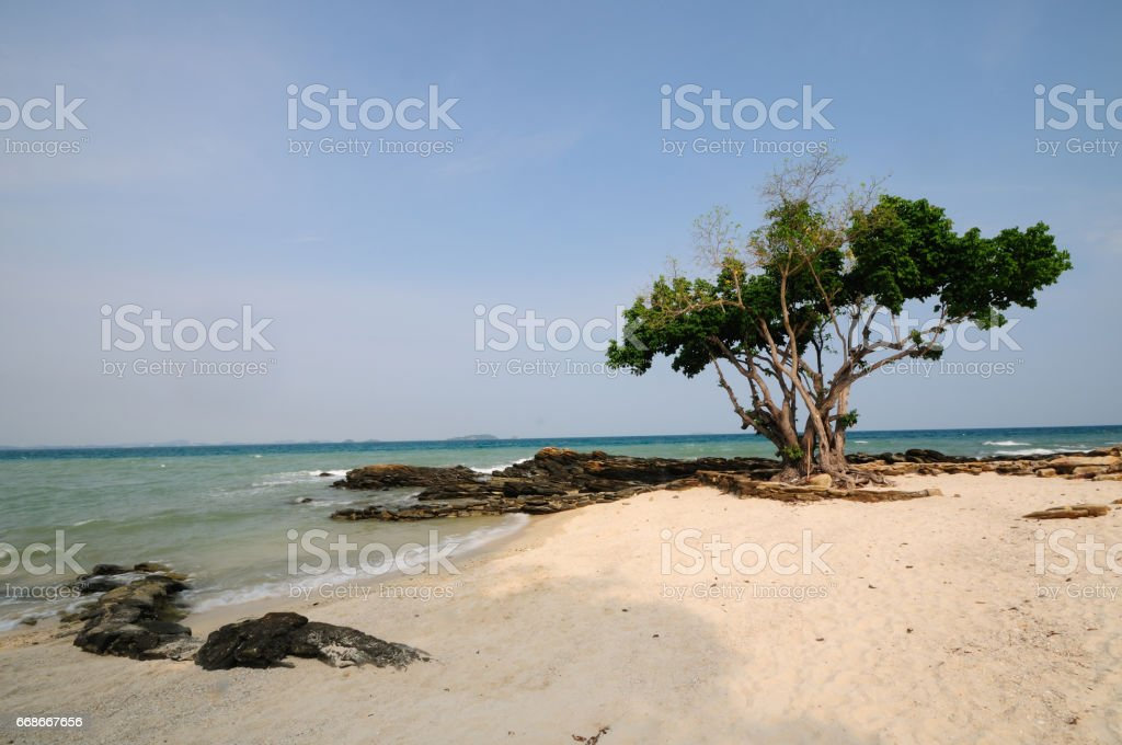 View of tropical beach stock photo