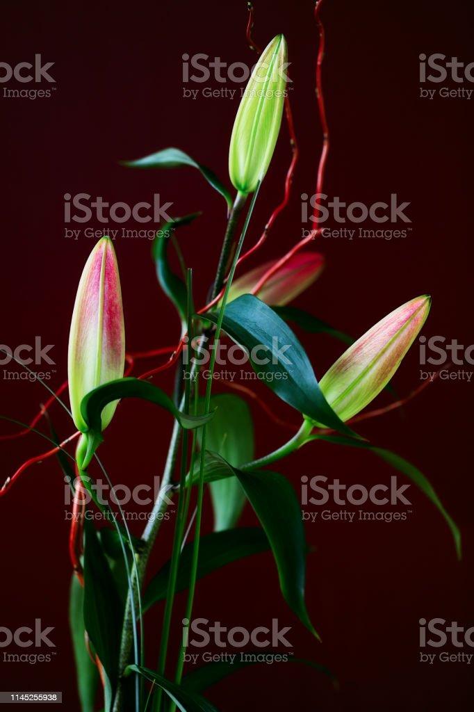 View of true lilies buds bouquet, arranging flowers, making flowers...