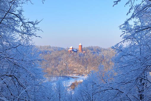 View of Turaida castle in Latvia during winter, surrounded by blue snowy branches