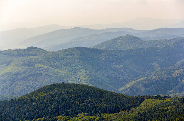 View of Vosges mountains in Alsace - France View of Vosges mountains in Alsace - France grand est stock pictures, royalty-free photos & images