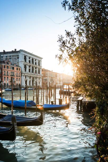diabetes palazzo grimani venezia