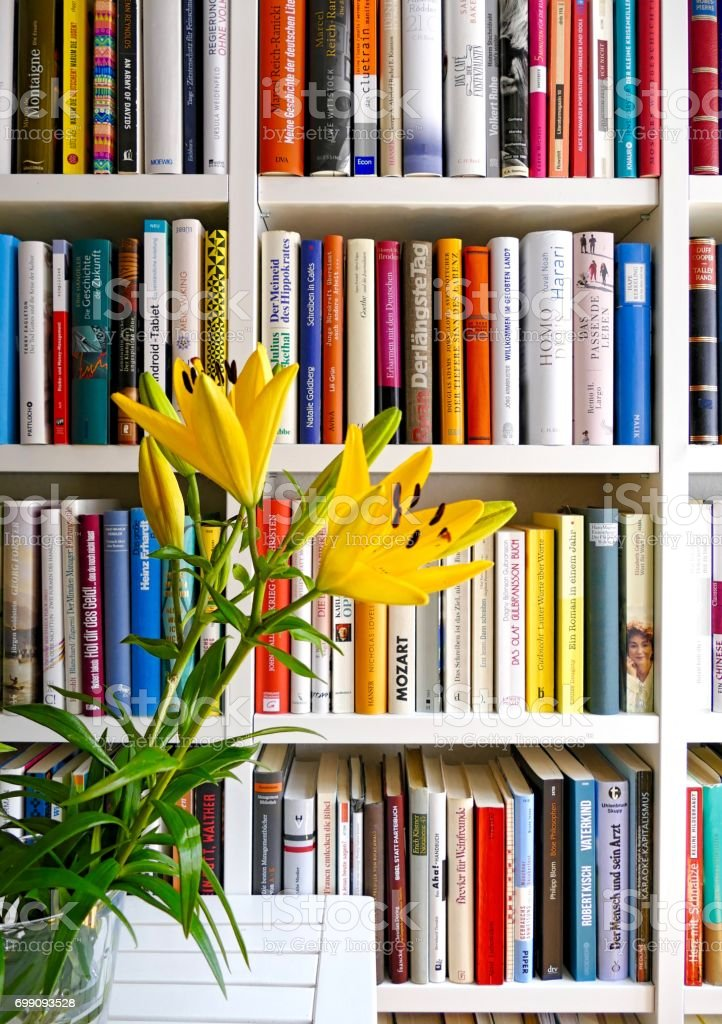 View Of White Fully Filled Book Shelves And Liliy In Front Royalty Free Stock Photo