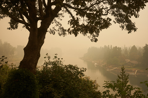 The Willamette River seen from Lake Oswego at noon during the Oregon wildfires in 2020.