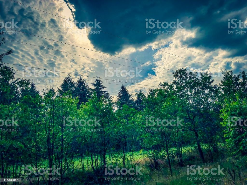 Picture shows a view on a dramatic forest with an dramatic sky.
